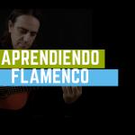 APRENDIENDO FLAMENCO